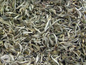 White tea with downy hairs.