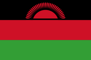 One of many flags of the world, in this case the flag of Malawi